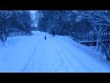 Белый цверг Еджин (6 мес) и Ксоло Викинг (5 мес) встретили большого овчара. 30.11. 2012.